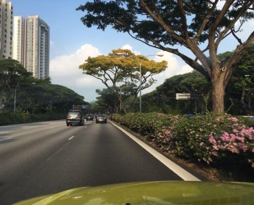 DRIMAS | Singapur | Projektmanagement